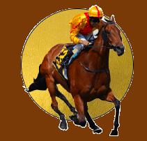 horse race - gold